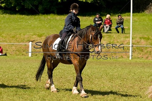 (c)SimoneHomberg_Ponyfest_2013_So_0081