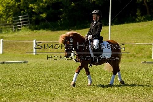 (c)SimoneHomberg_Ponyfest_2013_So_0092