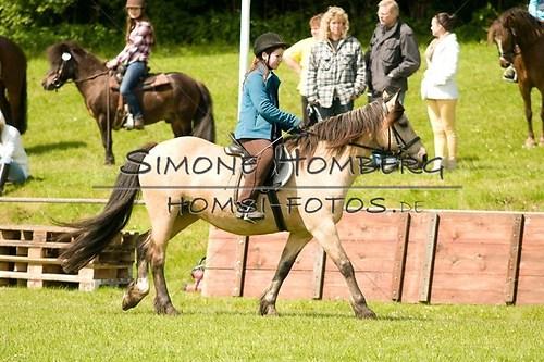 (c)SimoneHomberg_Ponyfest_2013_0030