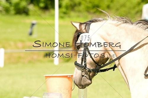 (c)SimoneHomberg_Ponyfest_2013_0034