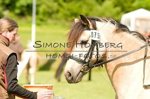 (c)SimoneHomberg_Ponyfest_2013_0035