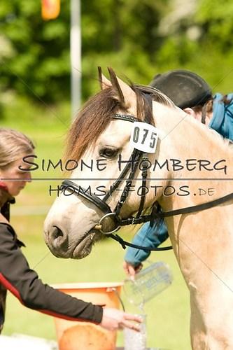 (c)SimoneHomberg_Ponyfest_2013_0036