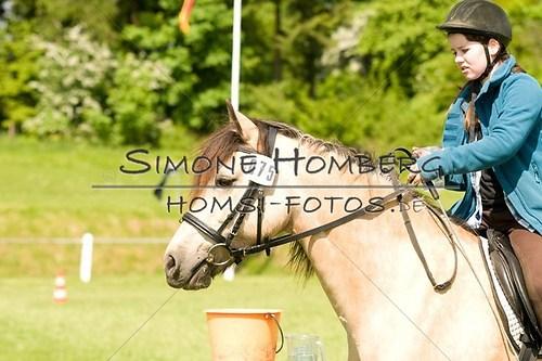 (c)SimoneHomberg_Ponyfest_2013_0038