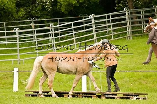 (c)SimoneHomberg_Ponyfest_2013_0174