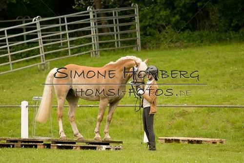 (c)SimoneHomberg_Ponyfest_2013_0175