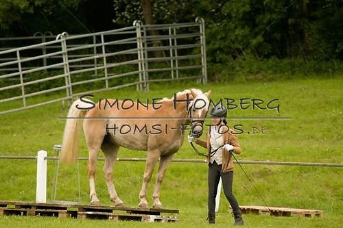 (c)SimoneHomberg_Ponyfest_2013_0176