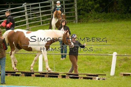 (c)SimoneHomberg_Ponyfest_2013_0178
