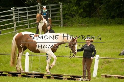 (c)SimoneHomberg_Ponyfest_2013_0180