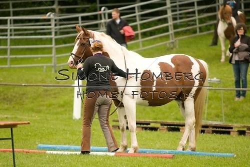(c)SimoneHomberg_Ponyfest_2013_0182