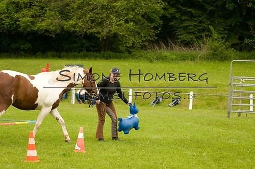 (c)SimoneHomberg_Ponyfest_2013_0189