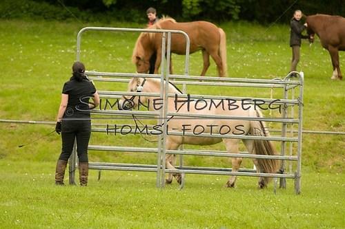(c)SimoneHomberg_Ponyfest_2013_0202