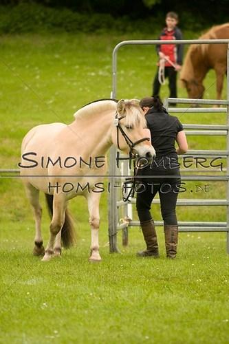(c)SimoneHomberg_Ponyfest_2013_0203