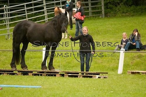(c)SimoneHomberg_Ponyfest_2013_0204