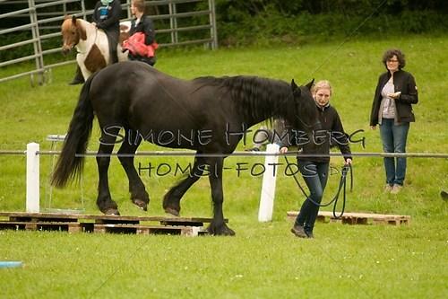(c)SimoneHomberg_Ponyfest_2013_0205