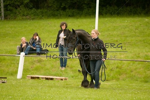 (c)SimoneHomberg_Ponyfest_2013_0206