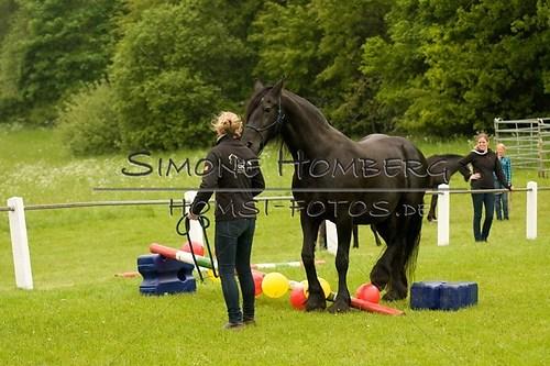 (c)SimoneHomberg_Ponyfest_2013_0208