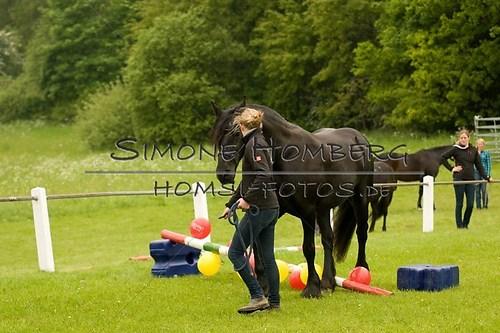 (c)SimoneHomberg_Ponyfest_2013_0209