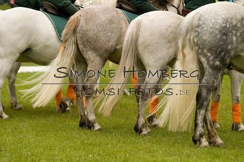 (c)SimoneHomberg_Ponyfest_2013_0578