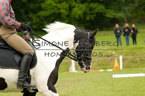 (c)SimoneHomberg_Ponyfest_2013_0630