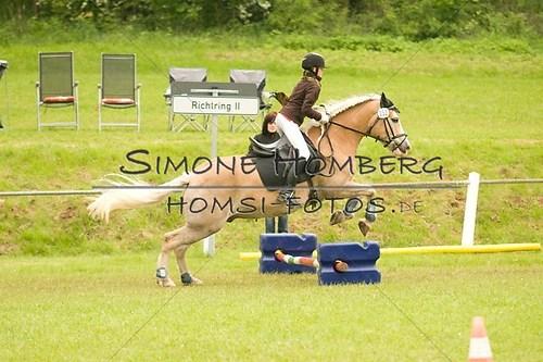 (c)SimoneHomberg_Ponyfest_2013_0515