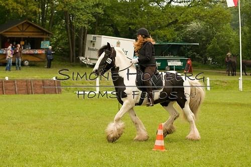 (c)SimoneHomberg_Ponyfest_2013_0538