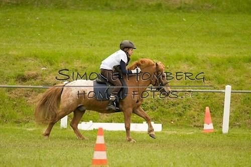 (c)SimoneHomberg_Ponyfest_2013_0547