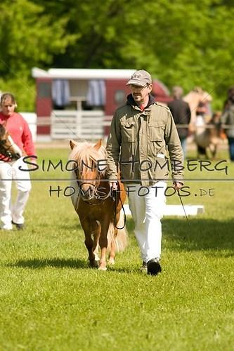 (c)SimoneHomberg_Ponyfest_2013_0011