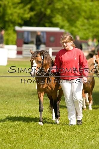 (c)SimoneHomberg_Ponyfest_2013_0012