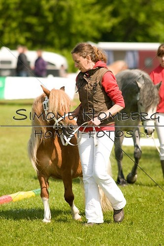 (c)SimoneHomberg_Ponyfest_2013_0013