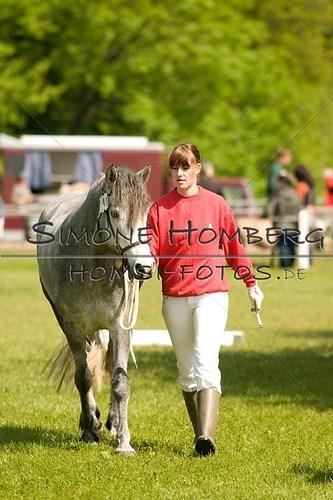 (c)SimoneHomberg_Ponyfest_2013_0014