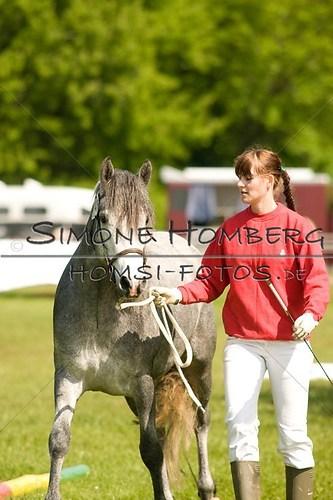 (c)SimoneHomberg_Ponyfest_2013_0015