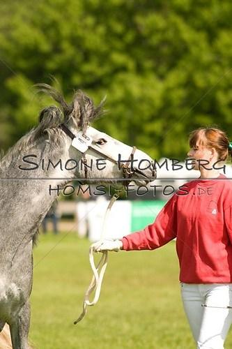 (c)SimoneHomberg_Ponyfest_2013_0016