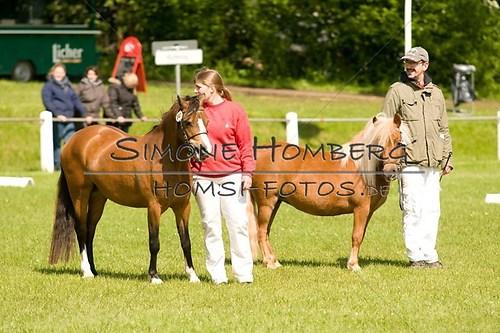 (c)SimoneHomberg_Ponyfest_2013_0020