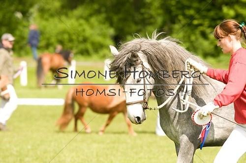 (c)SimoneHomberg_Ponyfest_2013_0028