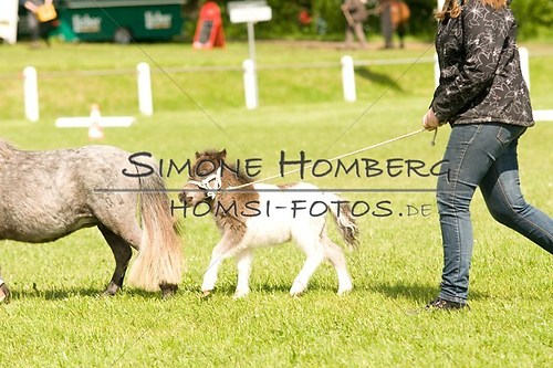 (c)SimoneHomberg_Ponyfest_2013_0031