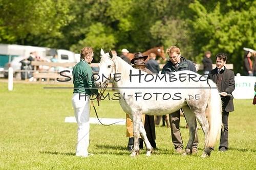 (c)SimoneHomberg_Ponyfest_2013_0041