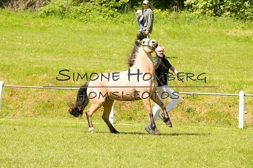 (c)SimoneHomberg_Ponyfest_2013_0044