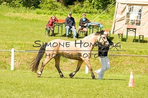 (c)SimoneHomberg_Ponyfest_2013_0045
