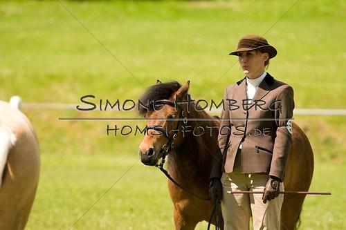 (c)SimoneHomberg_Ponyfest_2013_0046
