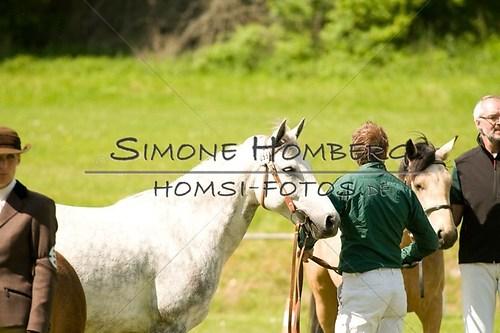 (c)SimoneHomberg_Ponyfest_2013_0049