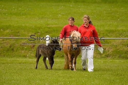 (c)SimoneHomberg_Ponyfest_2013_0140