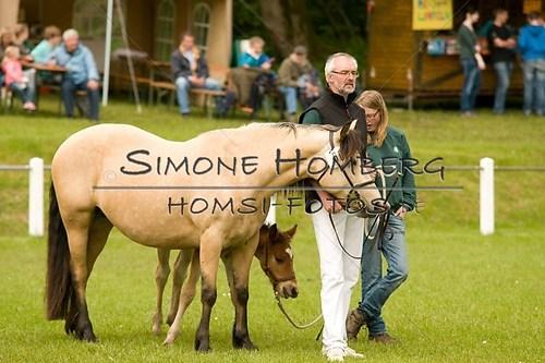 (c)SimoneHomberg_Ponyfest_2013_0153