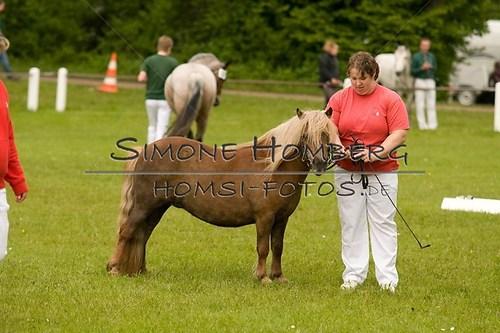 (c)SimoneHomberg_Ponyfest_2013_0154
