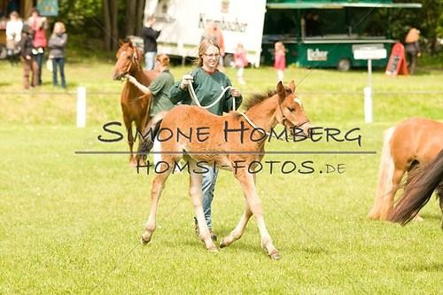 (c)SimoneHomberg_Ponyfest_2013_0155