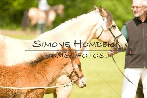 (c)SimoneHomberg_Ponyfest_2013_0156