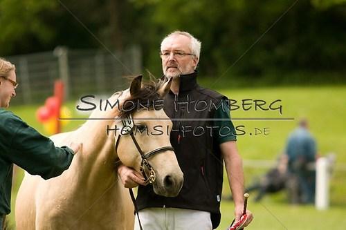 (c)SimoneHomberg_Ponyfest_2013_0157