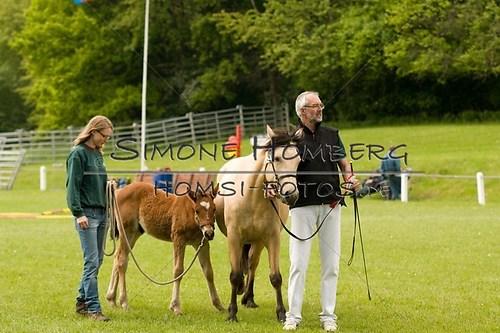 (c)SimoneHomberg_Ponyfest_2013_0158