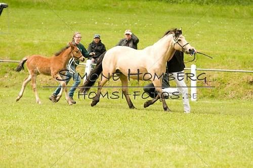 (c)SimoneHomberg_Ponyfest_2013_0160