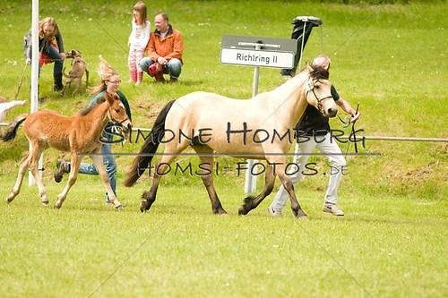 (c)SimoneHomberg_Ponyfest_2013_0161