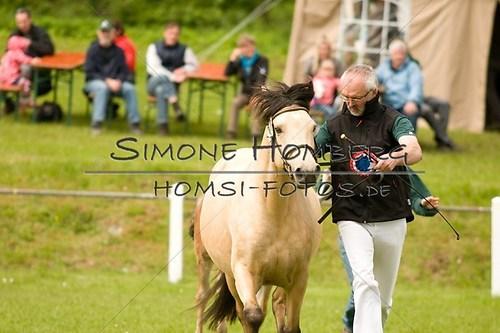 (c)SimoneHomberg_Ponyfest_2013_0163